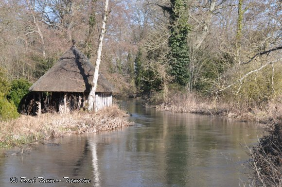 Cottage on the River Test